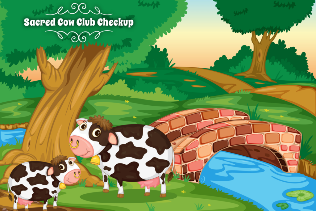 Sacred Cow Club Checkup